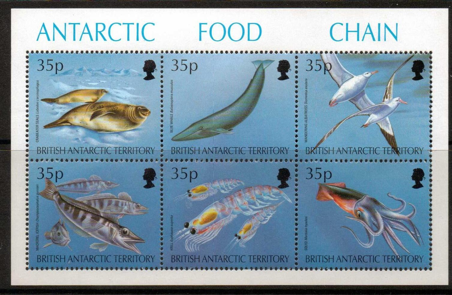 Electronics cars fashion collectibles coupons and more for Antarctic cuisine